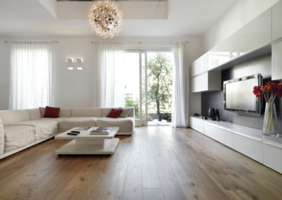 Modern living room with wood floor